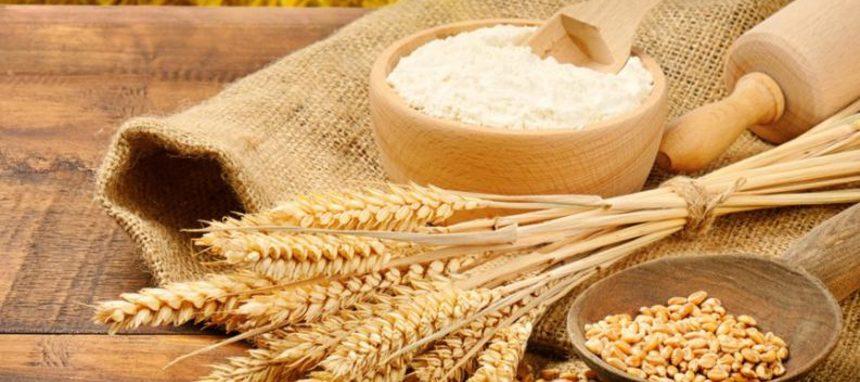 La CE prevé una ligera recuperación de la producción de cereales