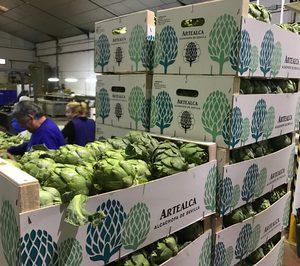 Artealca invierte en el negocio de conservas de maíz y alcachofas