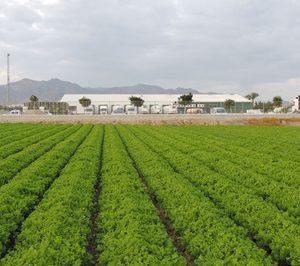 GS España simplifica su estructura y fusiona el grupo Agricola 92