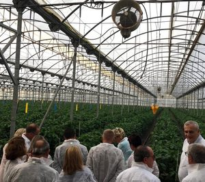 Hortiespaña impulsará los alimentos cultivados en invernadero
