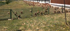 La interproveedora Huevos Guillén invertirá 13 M€ en Teruel