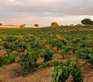 Ribera del Duero bate récord de ventas