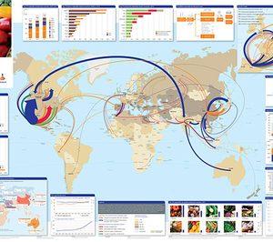 España, gran exportador hortofrutícola en un mercado más regional que global