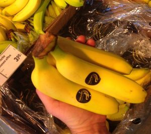 Europlátano suministrará a la francesa Biocoop, tras la liberación de la 'pica'