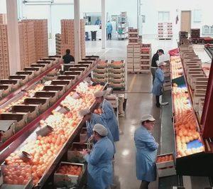 Anecoop y Fruits de Ponent refuerzan su estrategia comercial
