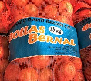 Cebollas Bernal, satisfecha con las ventas de 2017 a pesar de la calidad del producto