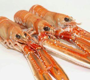 Dos sociedades del grupo Moray Fish presentan concurso
