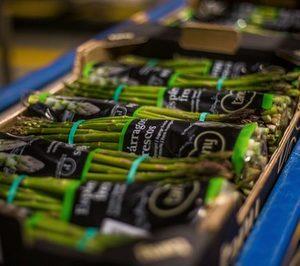 Tany Nature presenta el primer espárrago verde comestible al 100% en fresco