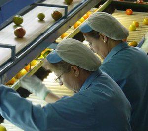 Las exportaciones hortofrutícolas crecen a un ritmo inferior