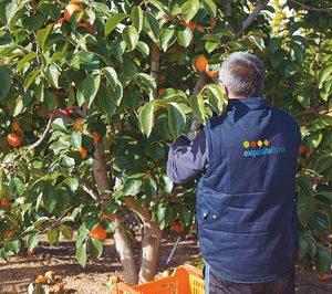 Exquisite Fruits, en plena expansión internacional, dobló sus ventas en 2017