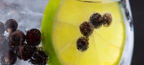 Los botánicos para mixología sientan la cabeza