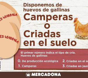 Mercadona comienza a vender sus primeros huevos de gallinas criadas en suelo