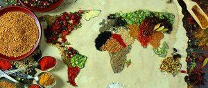 Análisis 2018 sobre el sector de Ingredientes Saludables