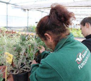 Fundown proveerá a Proexport en las barreras vegetales para el Mar Menor