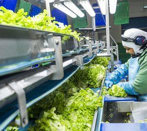 Grupo Alimentario Citrus completa la adquisición de Agromediterránea