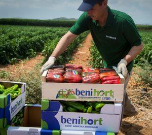 Benihort se inicia en la producción hortofrutícola ecológica