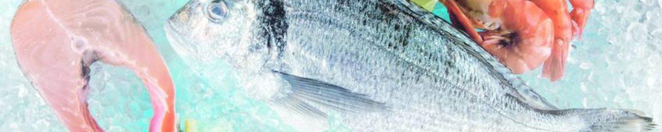 Informe 2018 del sector de pescado y marisco congelado