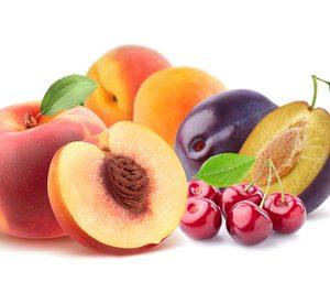 Bluenet crece impulsada por la fruta de hueso y la venta de hortalizas