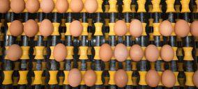 La interproveedora Huevos Guillén realiza más inversiones como líder sin jaulas