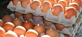 Un proveedor de huevos de MDD invertirá 15 M en una explotación sin jaulas