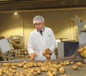 Patatas Meléndez iniciará la venta de boniato en 2019