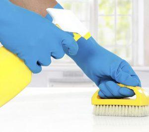 El segmento de limpiadores evoluciona favorablemente en nuestro país