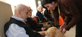 Los grupos geriátricos refuerzan sus estrategias en Alzheimer