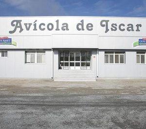 Grupo Hidalgo ampliará su matadero de pollos de Íscar