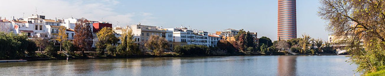 Informe 2018 de Hotelería Urbana en Sevilla