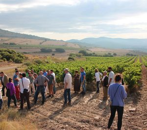 La DO Navarra apoya el proyecto Smart Sustainable Wine