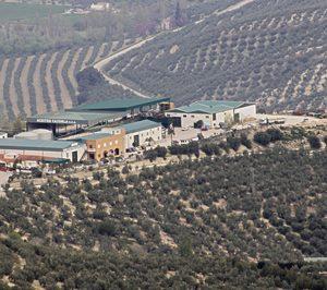 Aceites Cazorla amplía y moderniza sus instalaciones y se suma al oleoturismo