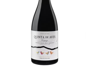 Se presentan los primeros vinos de crianza de Quinta de Aves
