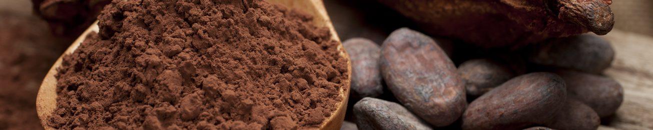 Informe 2018 del sector de chocolates para uso industrial en España