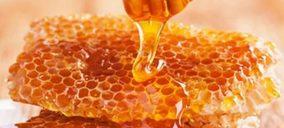 Asemiel-Animpa aclara algunos detalles sobre la miel que se consume en España
