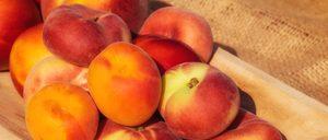 Fruta de Hueso:El descenso de fruta condiciona la campaña
