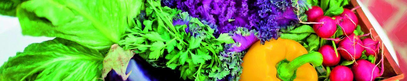 Frutas y Hortalizas Ecológicas: Producción estratégica
