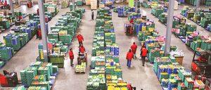 Informe 2019 del sector de Logística de Consumo en España