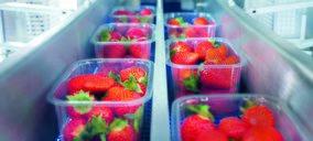 Ilip presenta en Fruit Logistica sus soluciones en sostenibilidad