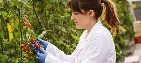 La Caña participa en un proyecto para dar valor al suministro del tomate