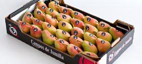 Las peras de Campos de Jumilla llegan a Líbano e Israel