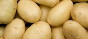 Una productora de patata fresca y V gama, en preconcurso