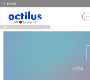 Grupo Octilus Iberia cesa actividad y emprende la liquidación