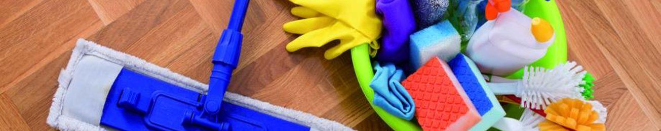 Informe 2019 del sector de Limpieza en España