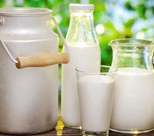 El consumo de leche sin lactosa sigue en aumento