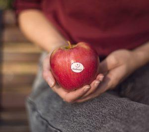 La manzana Ambrosia completará la temporada con crecimiento