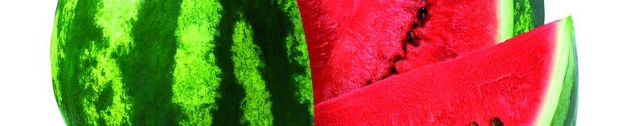 Informe 2019 sobre el sector de Melón y Sandía