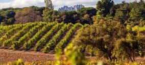 España sigue liderando la exportación de vino por volumen