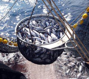 El sector pesquero redujo su nivel de capturas un 1,9% en 2018