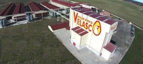 Avícola Velasco, nuevo acuerdo con un importante retailer e inversiones