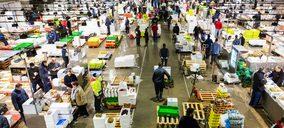 Una mayorista hortofrutícola, en concurso